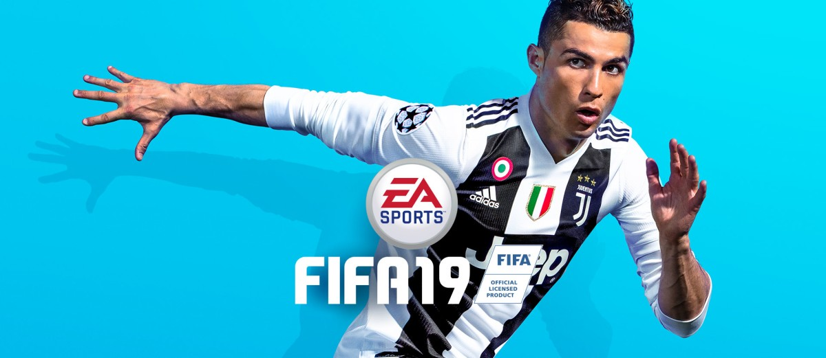 FIFA 19 review - A Birds Eye View